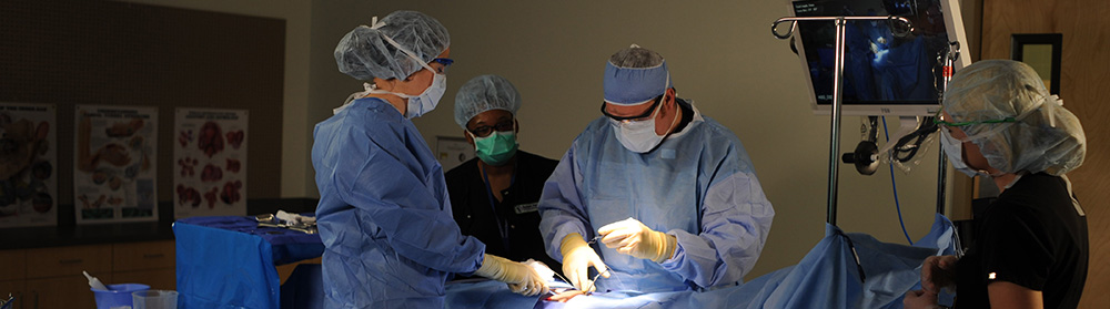 Surgical Technology Services Application Procedure