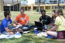5 students studying together on the lawn