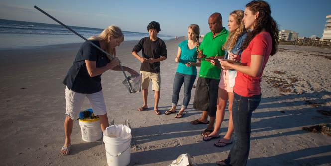 teacher showing students something in catch pale at beach